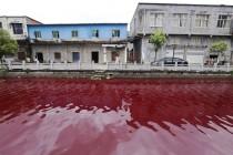 Misteriozna crvena reka u Kini