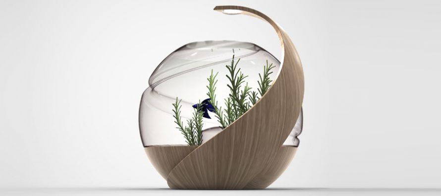 Više nikad nećete morati da čistite akvarijum – pogledajte zašto