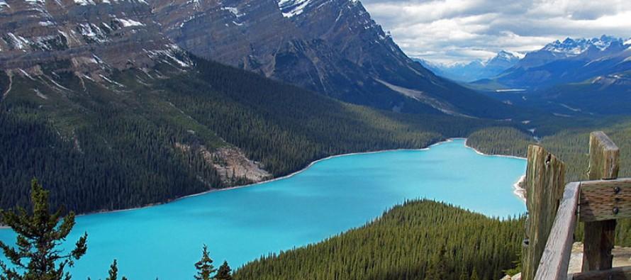Zagađenje pretvara jezera u Kanadi u želatin