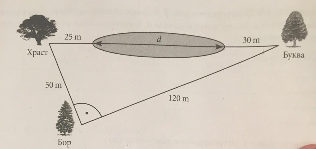matematika velicina ribnjaka