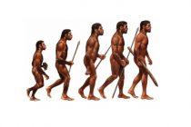 Homo sapiens poreklom iz Kine?