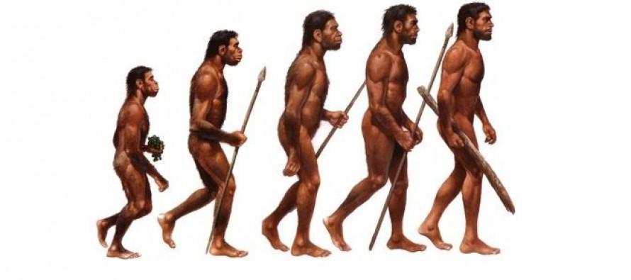 Šta je antropologija?