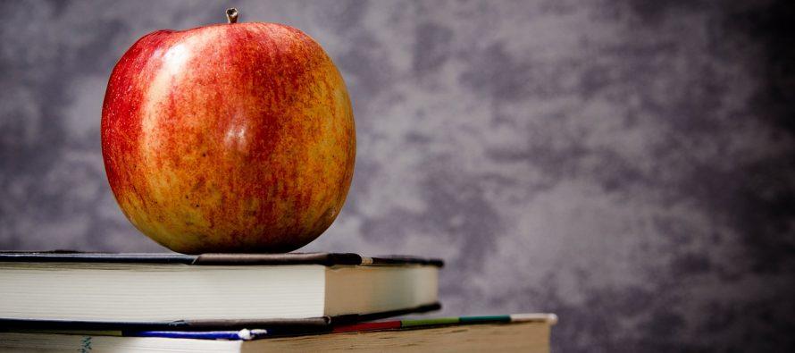 Samo jedan novi obrazovni profil ove godine