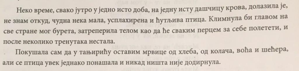 Srpski jezik - Isidora Sekulic