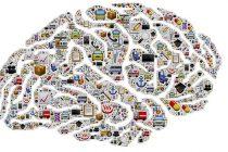 Šta je inteligencija?