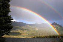 Zanimljive činjenice o najlepšem prirodnom fenomenu – dugi!
