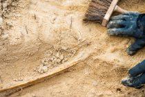 Meksiko: Tragovi civilacije stare 2.000 godina