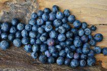 Hrana za mozak: Ove namirnice poboljšavaju koncentraciju