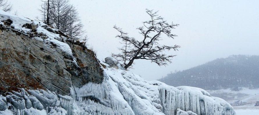 Ruski naučnici planiraju bizaran eksperiment: Sibir kao park iz ledenog doba!