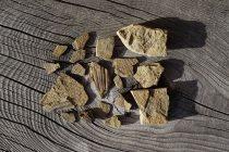 Otkriven fosil najstarijeg sisara na planeti?