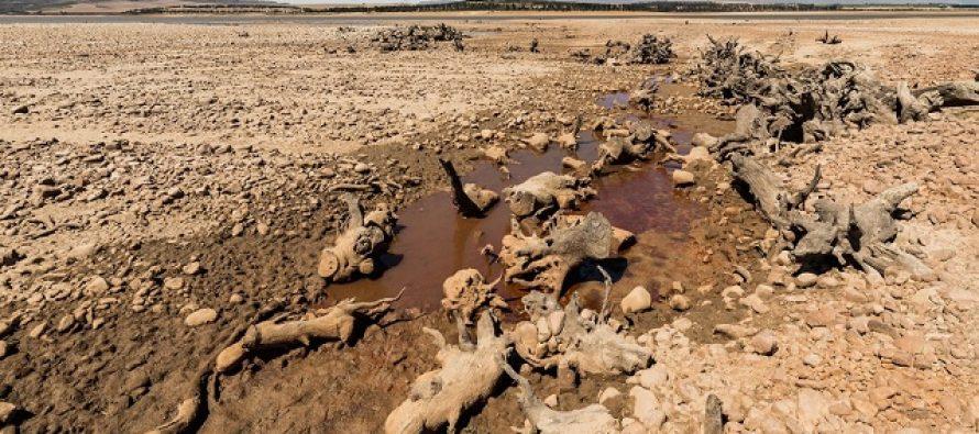 Kejptaun bi mogao da ostane bez vode za manje od 100 dana?