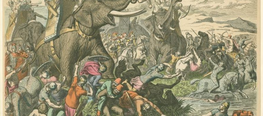 Koje životinje su učestvovale u ratovima?