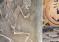 Otkrivena grobnica ljubavnog para stara 5000 godina