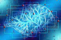 Kompjuter otkriva tajne ljudskog uma?