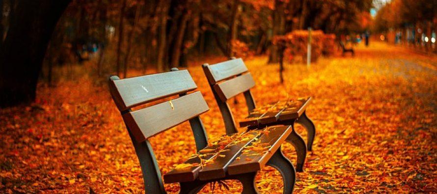 Zanimljive činjenice o jeseni