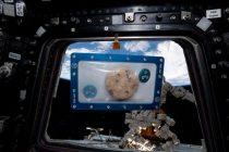 Na Zemlju stigli prvi svemirski kolačići!