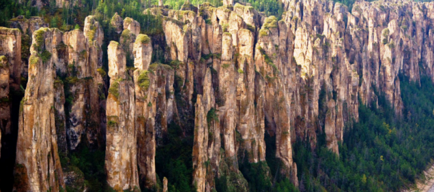 Kamena šuma u Sibiru