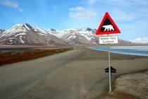 Svalbard – arhipelag u Arktičkom okeanu